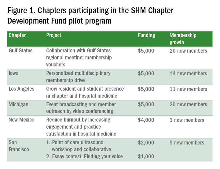 Chapters participating in the SHM Chapter Development Fund pilot program