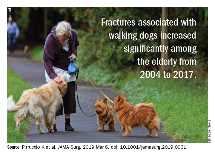 The number of dog-walking injuries among those aged 65 and older increased significantly from 2004 to 2017.