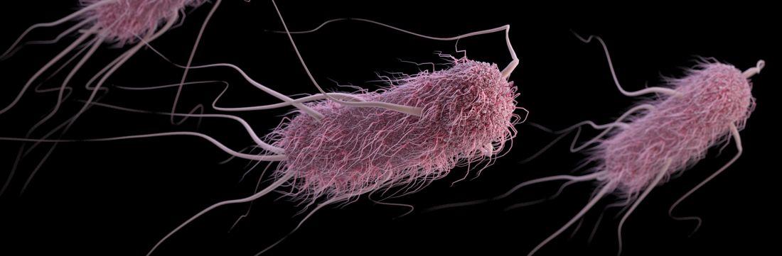 Extended-spectrum ß-lactamase-producing Enterobacteriaceae (ESBLs) bacteria, in this case, Escherichia coli.