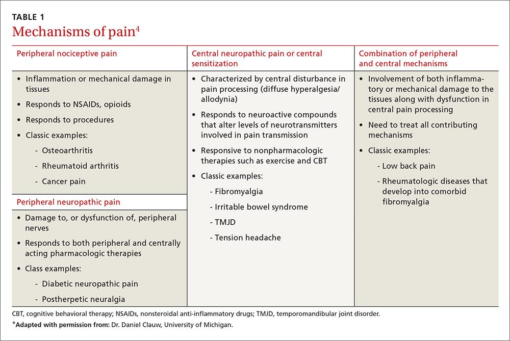 Mechanisms of pain image