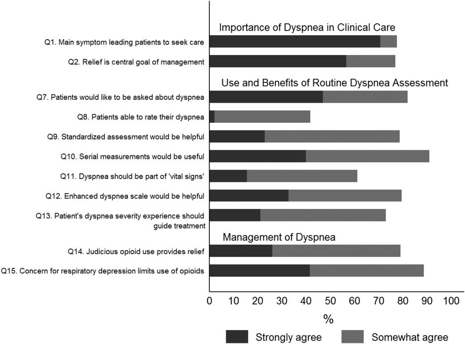 Dyspnea Assessment and Management Survey | Journal of ...