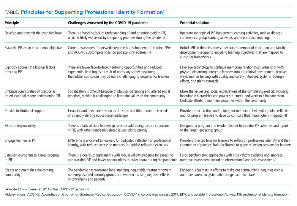 Principles for Supporting Professional Identity Formation