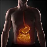 What medical therapies work for gastroparesis?