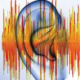 What's the Buzz? Treatment Strategies in Chronic Subjective Tinnitus