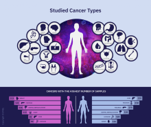 The Pan-Cancer Analysis of Whole Genomes Consortium analyzed more than 2,600 tumor samples from patients with 38 cancer types.