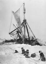 Endurance final sinking in Antarctica, November 1915. The dogs were later shot to conserve supplies.
