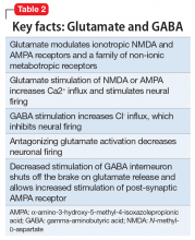 Key facts: Glutamate and GABA