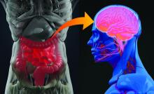 Illustration of gut-brain connection