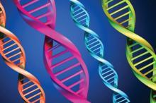 An illustration of DNA strands