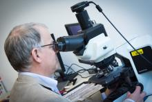 Dr. Lukas Kenner is cofounder of the European Research Initiative on ALK-mediated diseases.