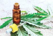 An eyedropper of cannabis oil with some cannabis leaves is shown