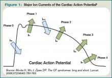 Figure 1:  Major Ion Currents of the Cardiac Action Potential
