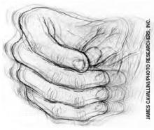 The four primary symptoms of Parkinson's disease are trembling in hands, arms, legs, jaw, and face; rigidity, or stiffness of the limbs and trunk; bradykinesia, or slowness of movement; and postural instability, or impaired balance and coordination.