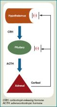 Figure 1: Normal production and regulation of cortisol secretion.